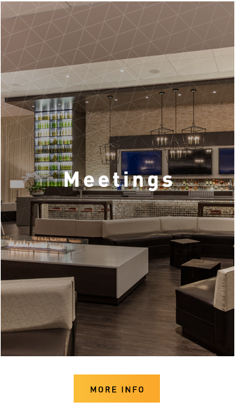 Learn More About Meetings